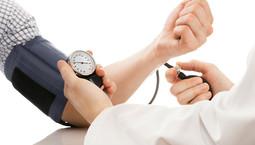 Herz-Kreislauf-Untersuchungen